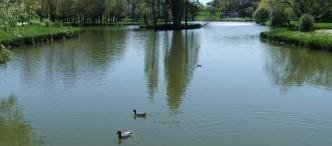 Parc Raymond Vigne